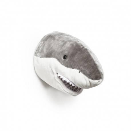 Jack le requin